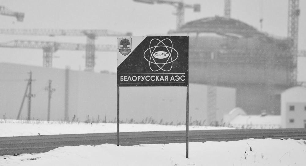 Европарламент потребовал приостановить запуск Белорусской АЭС
