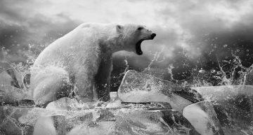Экологический налог на добычу углеводородов для России