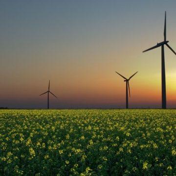 Россия увеличит в 10 раз долю ВИЭ в энергобалансе страны в 2040 году